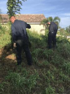Inspection for rodent nesting (772)579-0230