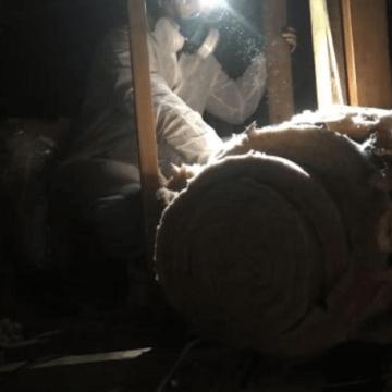 Rodent Sanitation (772)579-0230