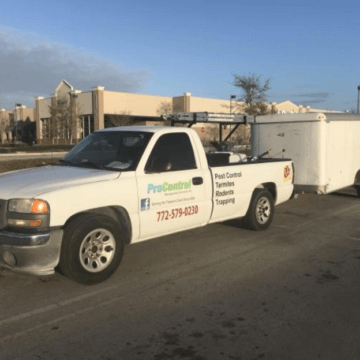 pro control termite eliminator (772)579-0230