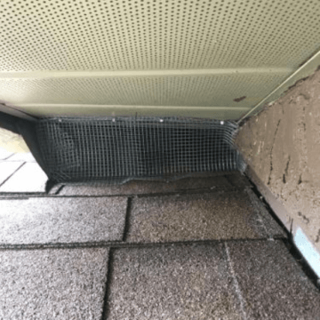 Rodent Exclusion on home (galvanized steal meshing) (772)579-0230