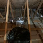 Attic-Cleaning (772)579-0230