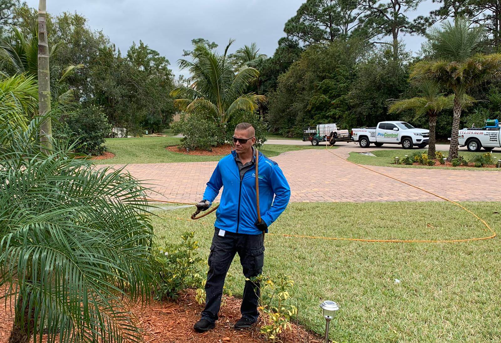 Professional Lawn Treatment Service and pest control west palm beach