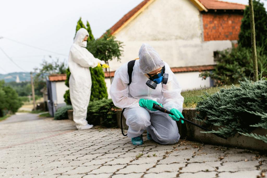 Spraying Pests (772)579-0230