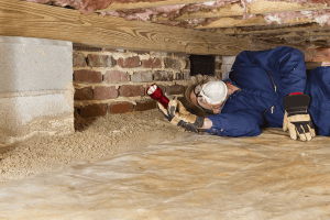Prevent Termite Infestations
