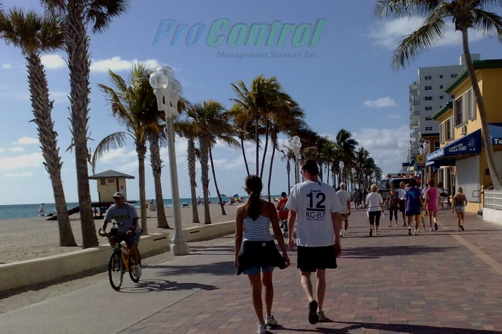 baywalk with palm trees in palm beach gardens
