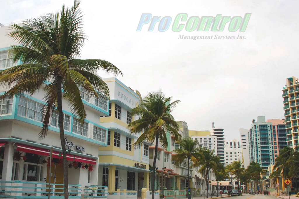 palm trees and a building