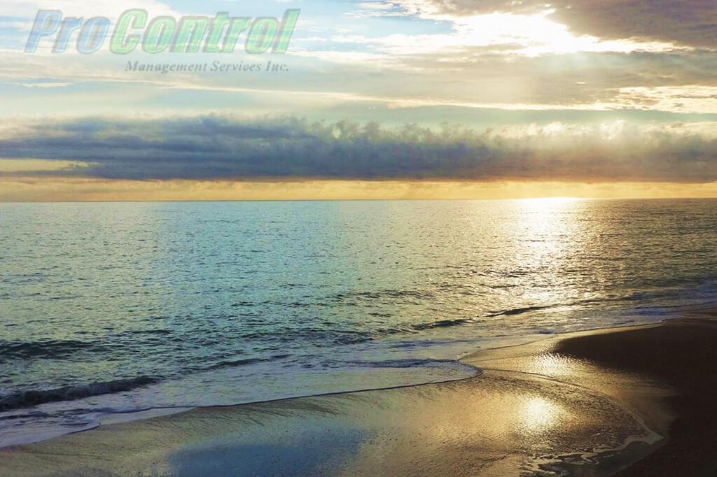 vero beach view